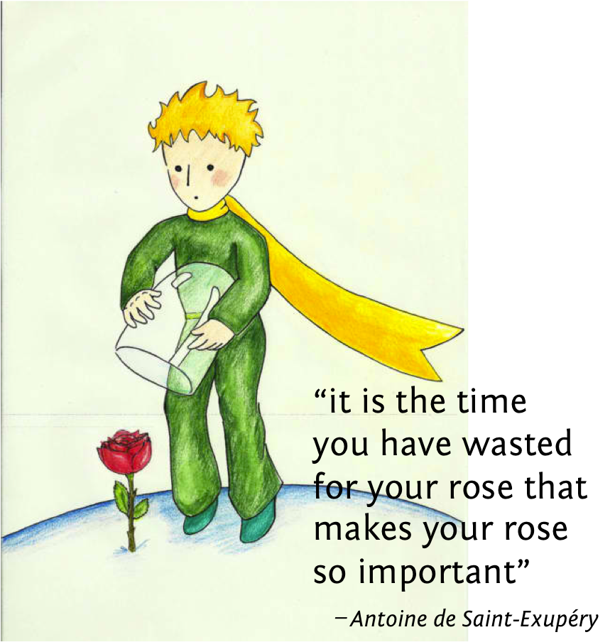 the little prince stuff to buy poem quotation and  the little prince
