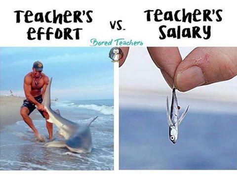 Esfuerzo de un Profesor vs. salario de un Profesor.