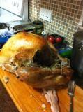Thanksgiving - La dinde