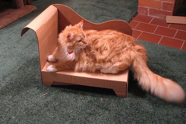 chaise longue de cart n para el gato diy con plantilla. Black Bedroom Furniture Sets. Home Design Ideas