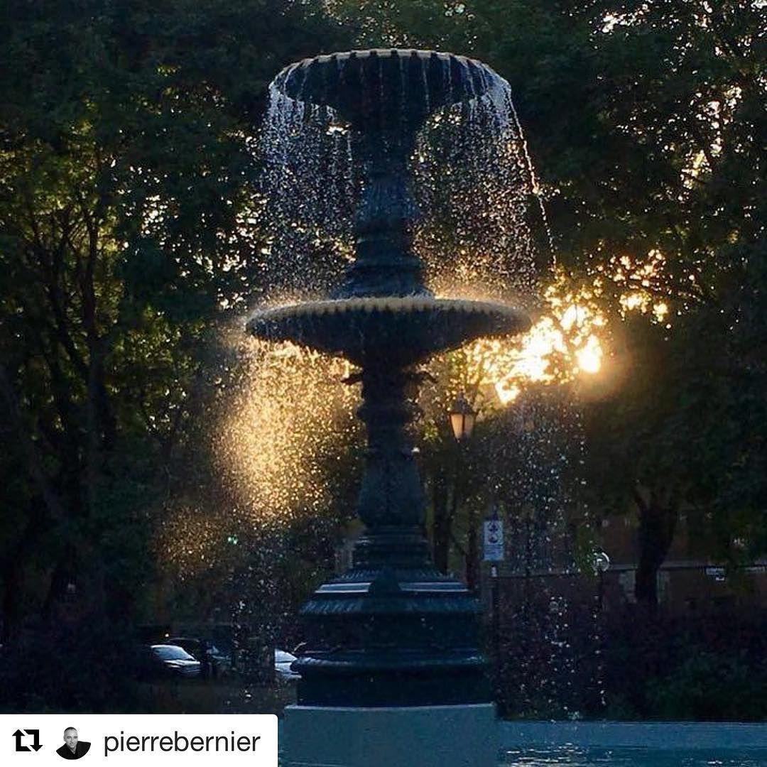 Repost Pierrebernier Get Repost Carresaintlouis Squaresaintlouis Mtl Montreal Canada Sunset Light Lumiere Fon In 2020 Outdoor Decor Outdoor Instagram
