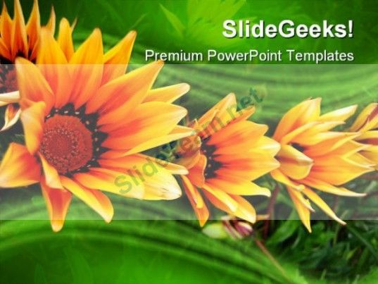 Triplet Nature PowerPoint Templates And PowerPoint Backgrounds - nature powerpoint template