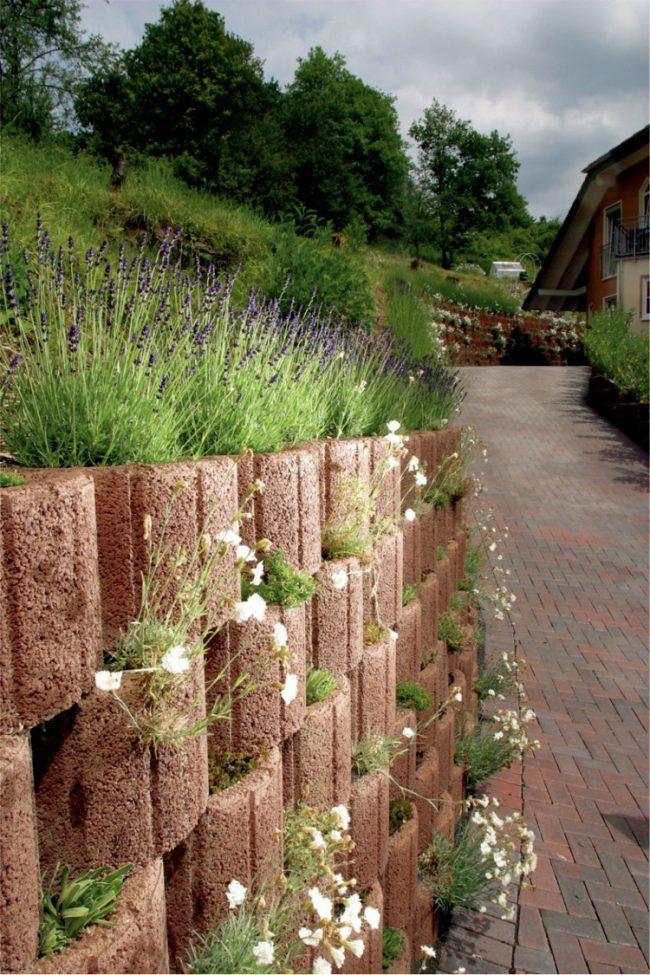 Pflanzringe Beton pflanzringe beton setzen gartengestaltung ziegelrot oval sand nelken