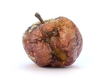 Slownik Tematyczny Jedzenie I Picie Z Wymowa I Obrazkiem Szlifuj Swoj Angielski Food Vegetables Onion