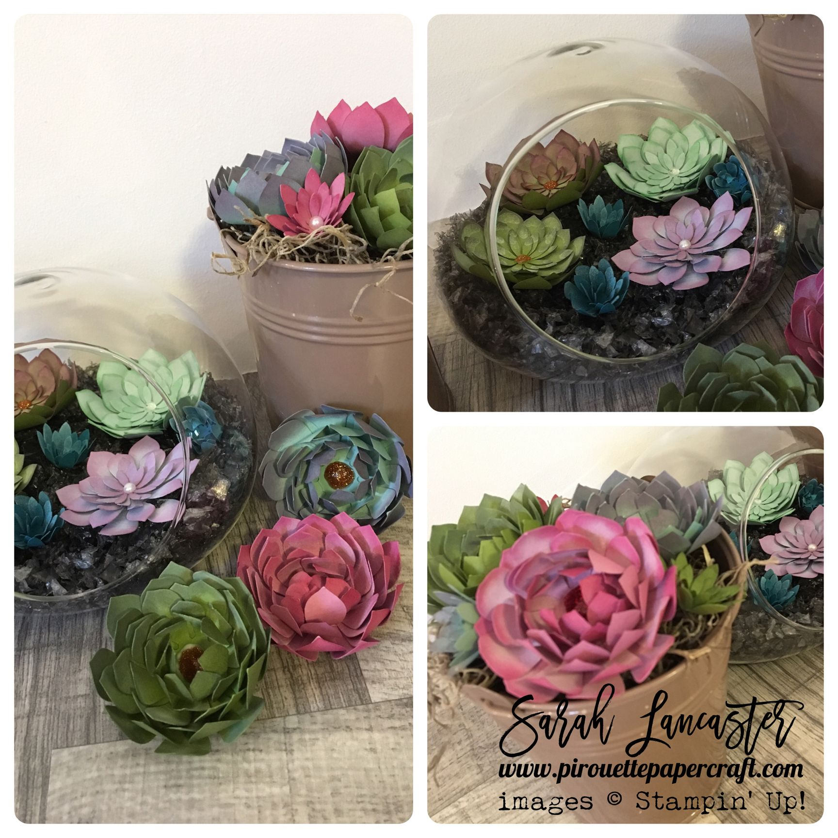 Oh so succulent you are going to love this set from stampin up you are going to love this set from stampin up mightylinksfo Choice Image