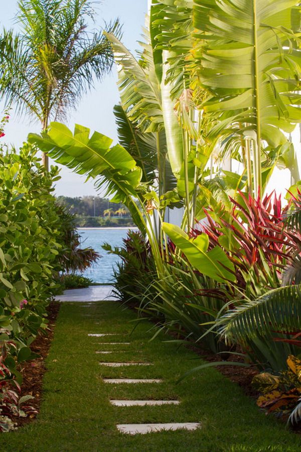 Beautiful tropical bananas tree garden patio landscape Beautiful garden patio designs