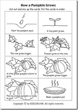 Pin von Taylor Triplett auf Teaching-Kindergarten | Pinterest ...