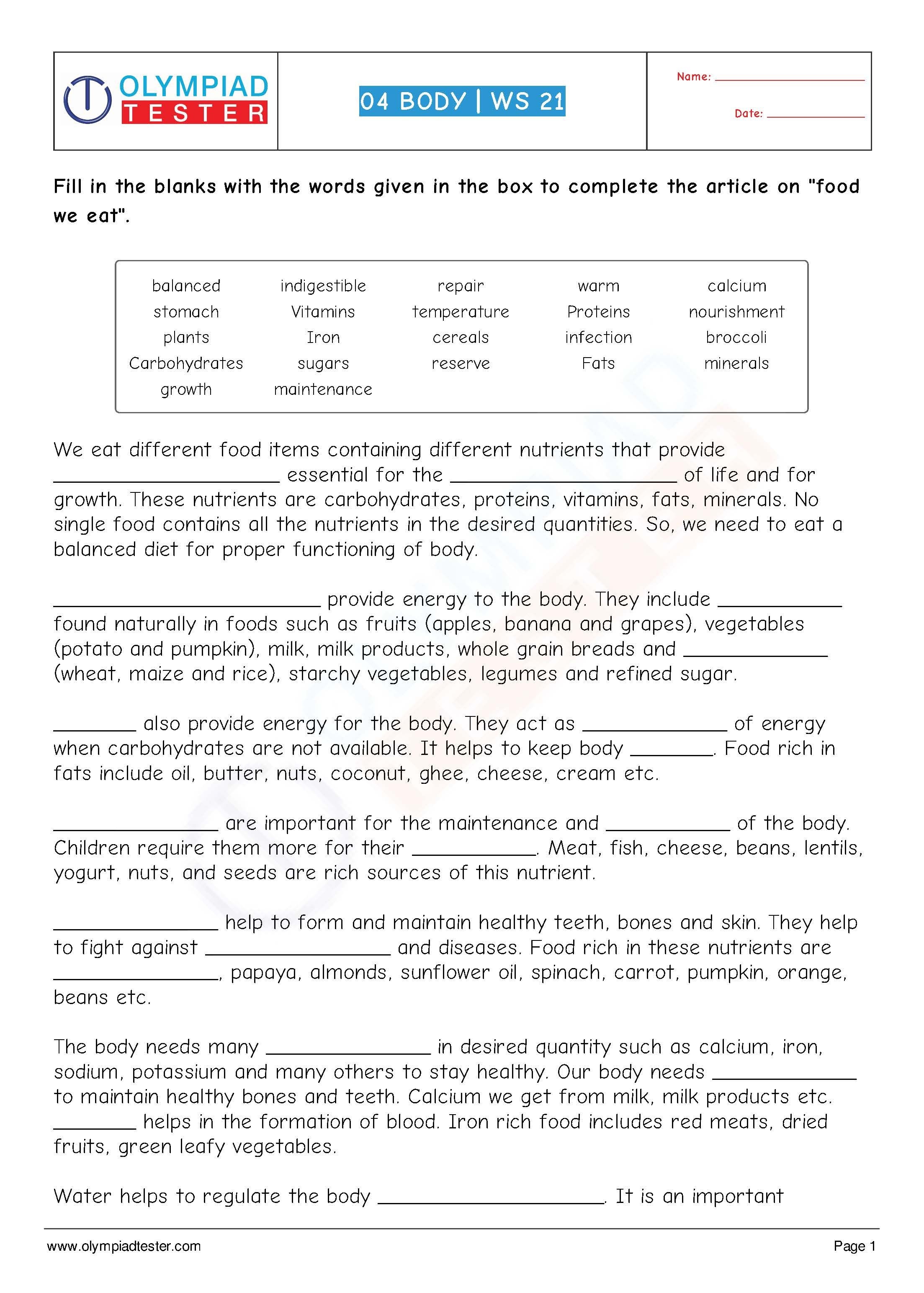 Human Body Worksheet 21