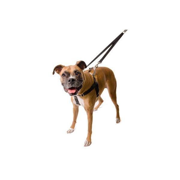 Furbabies Clothing Reflective Dog Harness Dog Harness Dog Biting Training