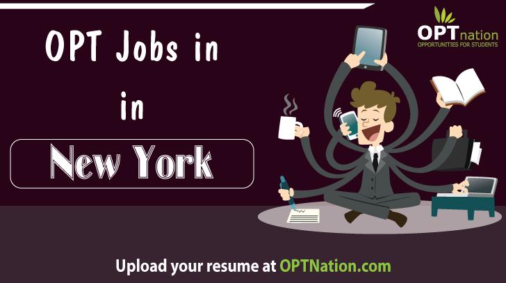 Jobs In New York Job Opening Job Posting Job