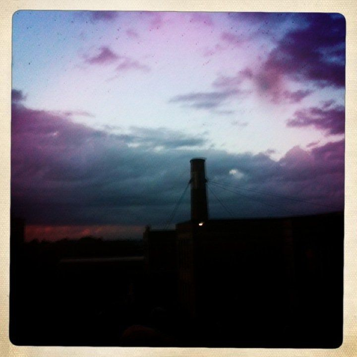 Watching The Swifts Fly Out Of The Chimney Portland