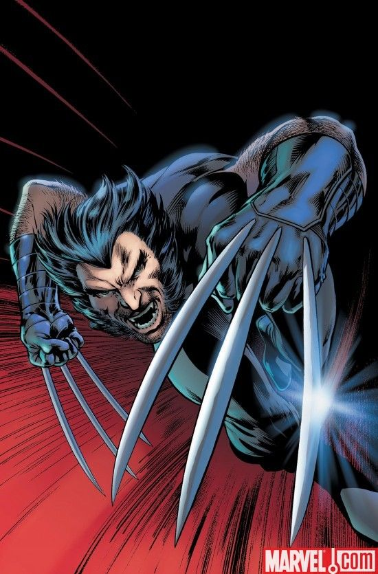 Click to close image click and drag to move use arrow keys for wolverine weapon x by alan davis voltagebd Images