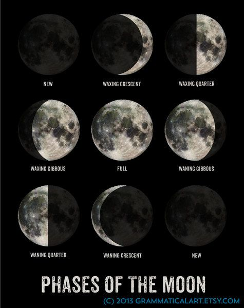 Hey I Found This Really Awesome Etsy Listing At 152584580 Moon Phase Poster Geekery Lunar Phases