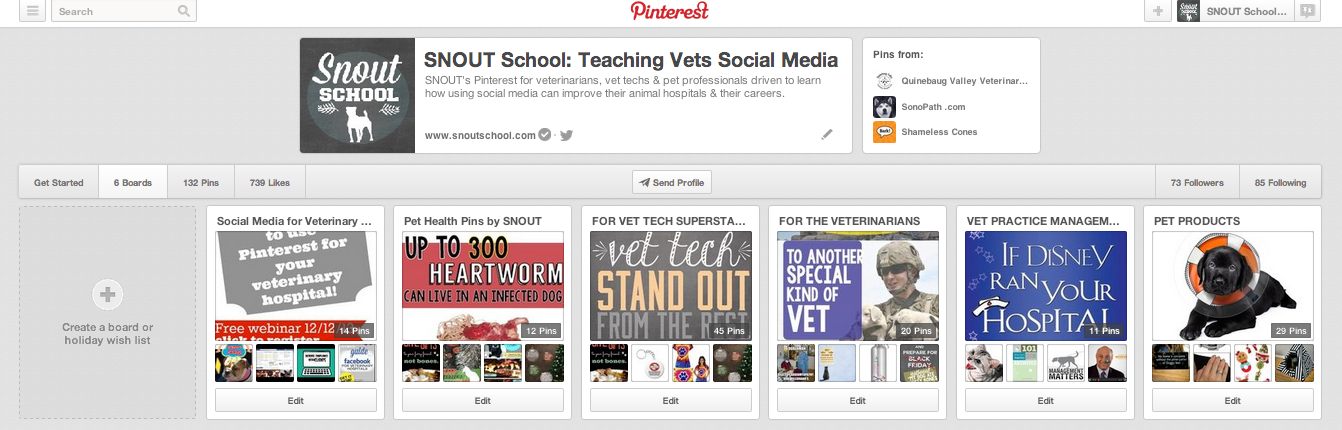 5 Pinterest Questions Answered: for Veterinary Clinics