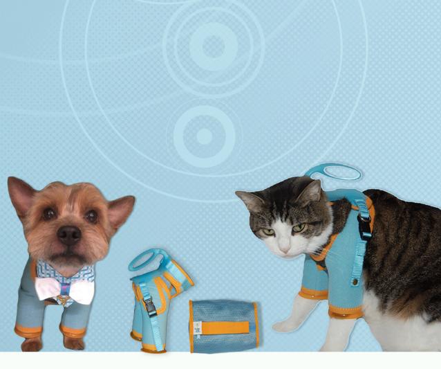Pin on Pet Comforts