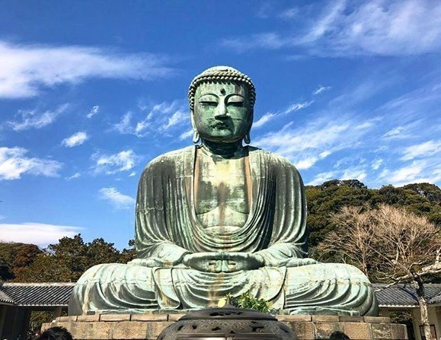 Pin By Tom Shey On Pure Land Buddha Gautama Buddha Statue