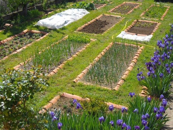 diy vegetable garden ideas patio garden planssjpg