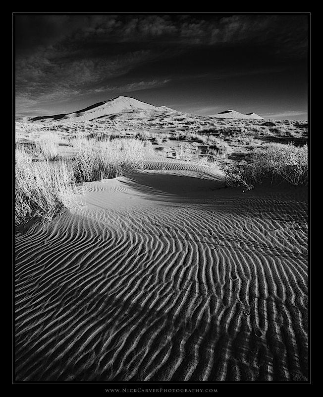 Kelso sand dunes photography tips photography tutorials