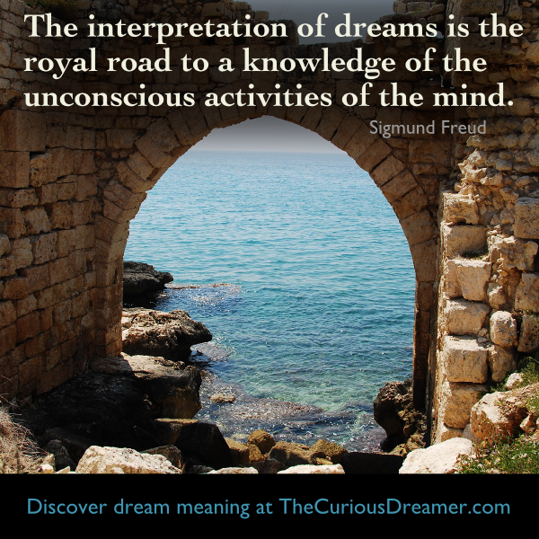 The Interpretation Of Dreams Is The Royal Road To A Knowledge Of The