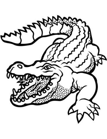 Crocodile With Open Mouth Coloring Page Alligators Art Vector Drawing Drawings