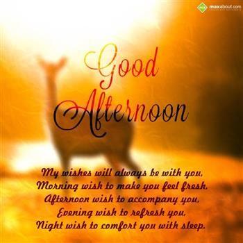 Kuvahaun Tulos Haulle Evening Wishes Good Day Good Afternoon