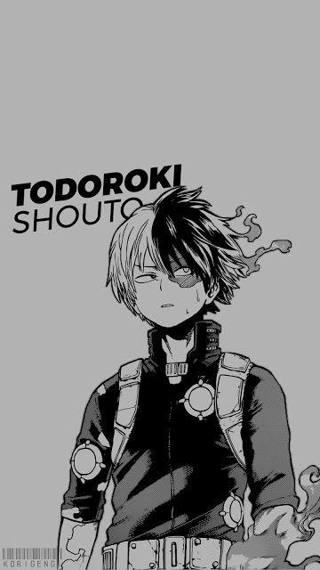 Todoroki Shouto V2