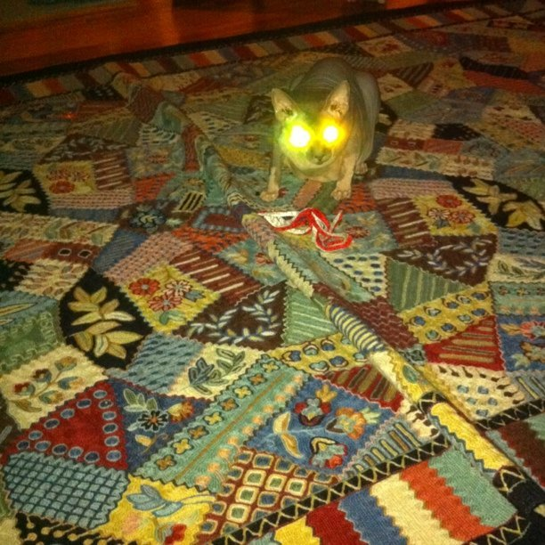 remages  Glowingeyed demon on a wild rug Taken with