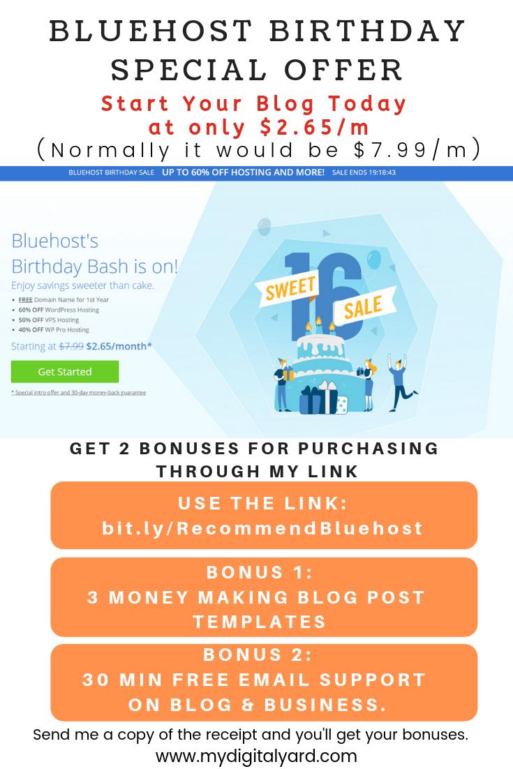 Bluehost Birthday Special Offer Blog Post Template Business Blog Make Blog