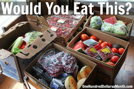 Food Waste In America How To Score Free Food From Your Grocery Store Food Waste Eat Food
