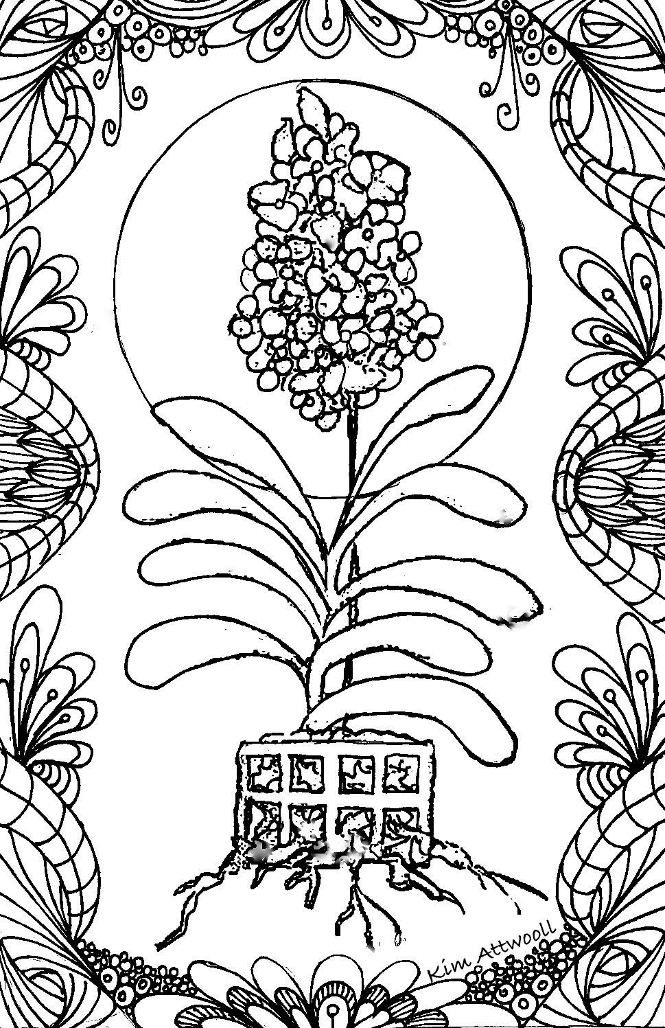 Vanda Orchid, Doodle card by Kim Attwooll | Floral Coloring Pages ...