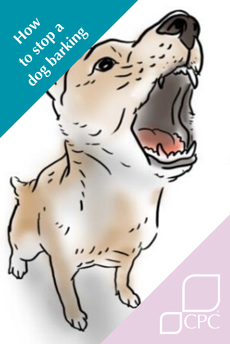 Learn How To Stop A Dog Barking And Get On With Your Neighbours Dog Barking Stop Dog Barking Dog Training