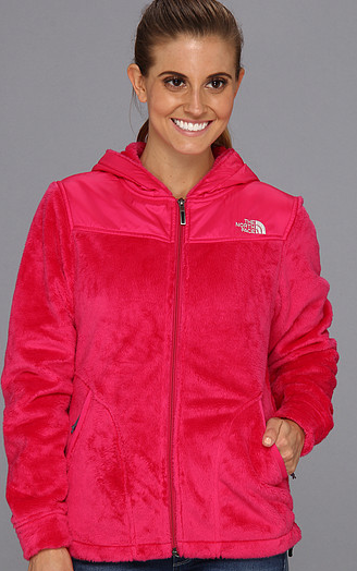bce66ab255b2 STL Mommy « The North Face Oso Hoodie  50.40 Shipped (Retail  140 ...