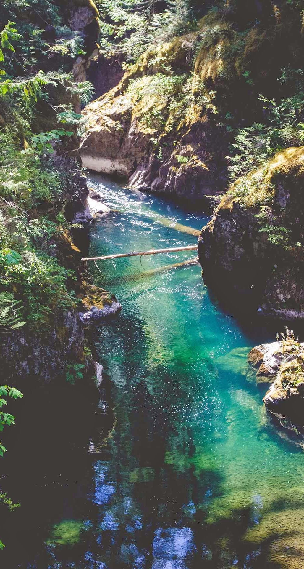 Download Green Forest Cliffs River iPhone 6 Plus HD Wallpaper