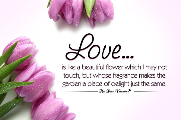 Love Quotes Love Is Like A Beautiful Flower Desserts And Food Interesting Flower Love Quotes