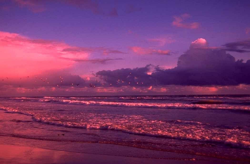 Bmzw4hkv dans fond ecran paysage violet nature for Fonds ecran paysages superbes