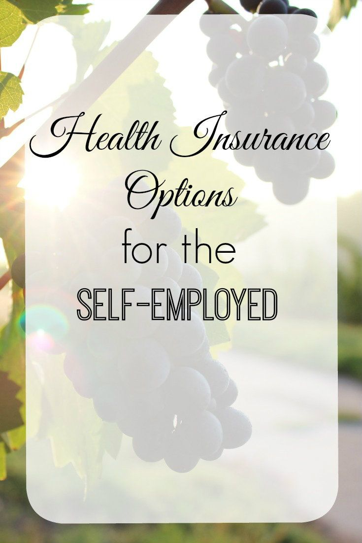 Health insurance options for the selfemployed nikki in