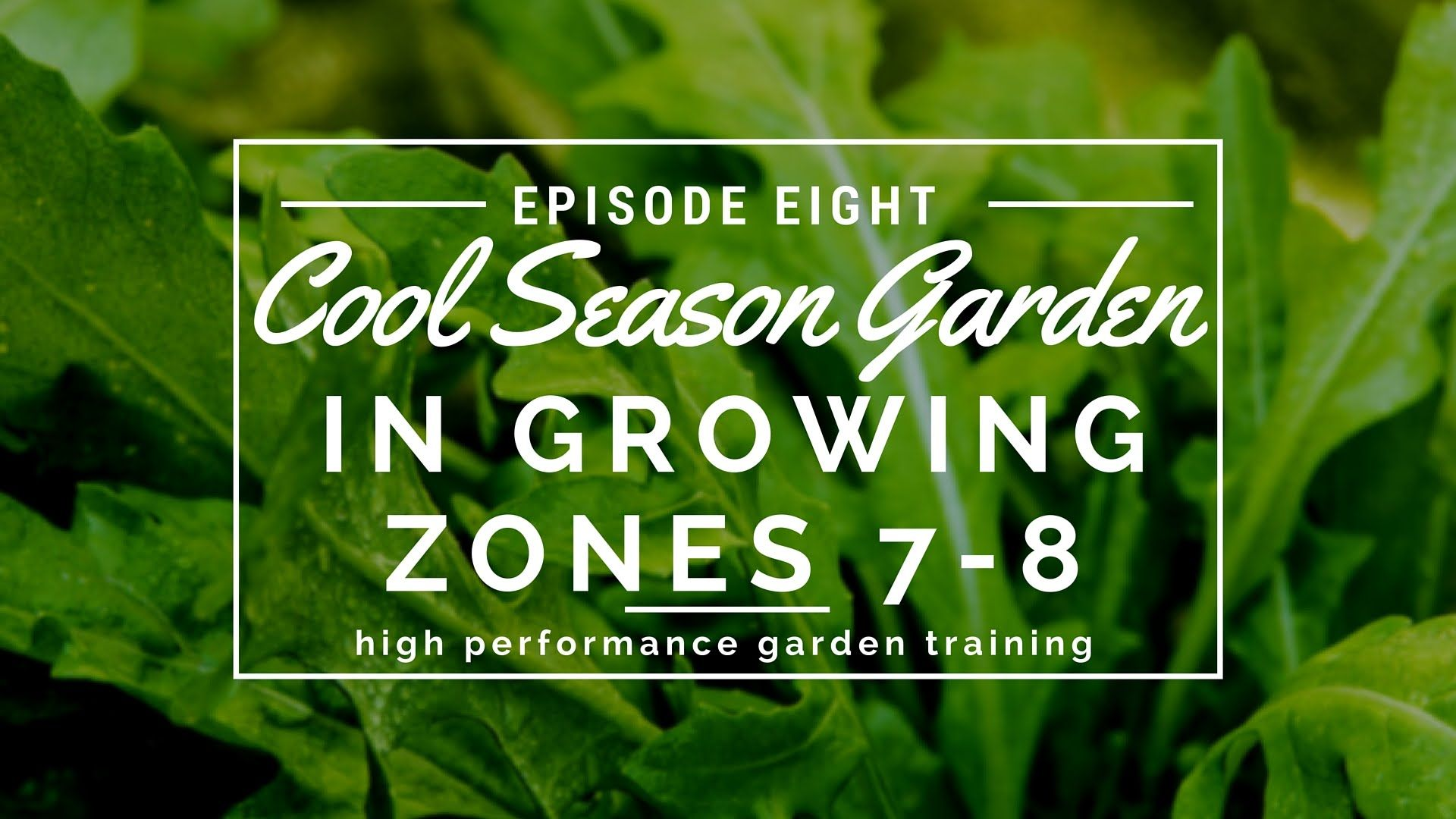 d894642f8b770f83825e6b4503dd5a3e - What Gardening Zone Is Westchester Ny