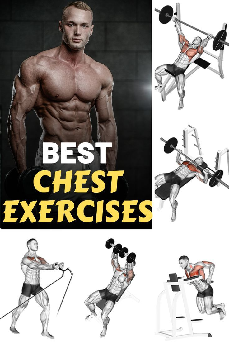 As far as the perfect physic goes, having a strong and well defined chest is a necessity.   While th...