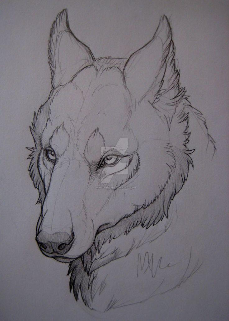 Photo of Wolf-head study. by MonsterMyrr.devia… on @DeviantArt – #desenho #DeviantArt #…