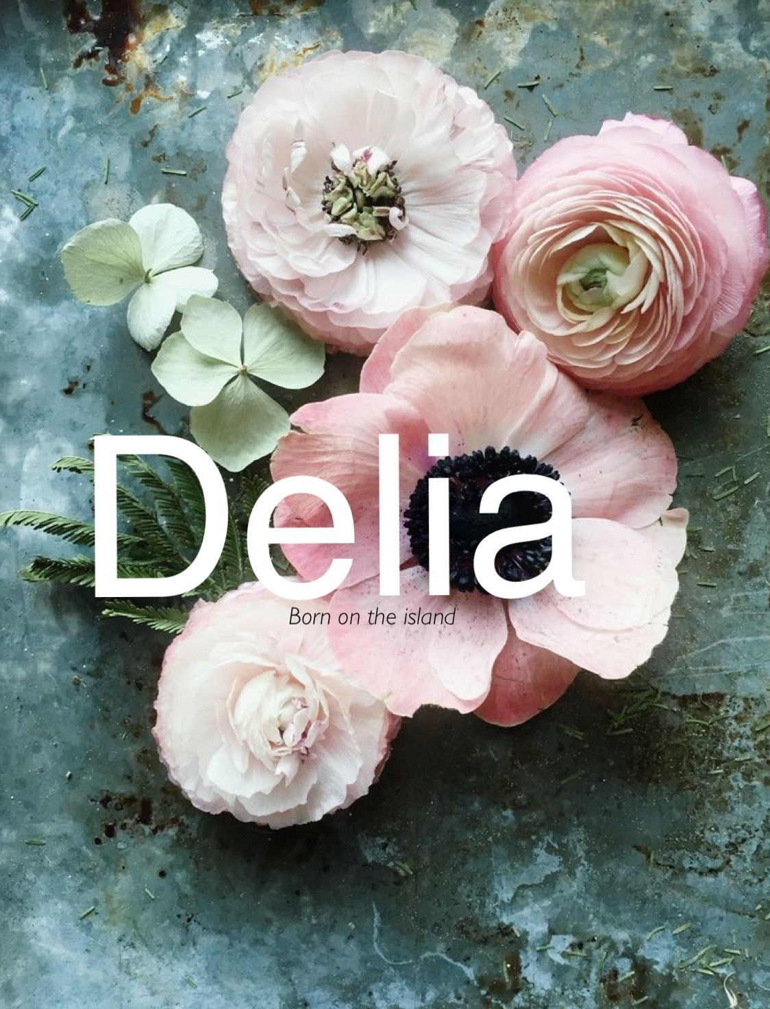 Delia, baby girl names, baby names, D baby girl names, middle girl names, short baby names, feminine baby names, names that start with D, unique baby names, sweet girl names