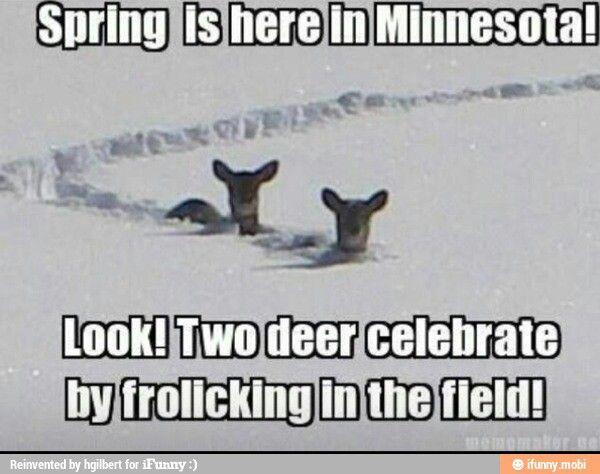 Minnesota I Hate Minnesota More In 2019 Pinterest Minnesota
