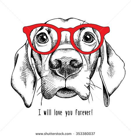 d234d69fabb44 Portrait of a dog Labrador in red glasses. Vector illustration.