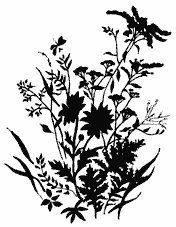 Wildflower Silhouette | Stamp, Paper art craft, Art studios