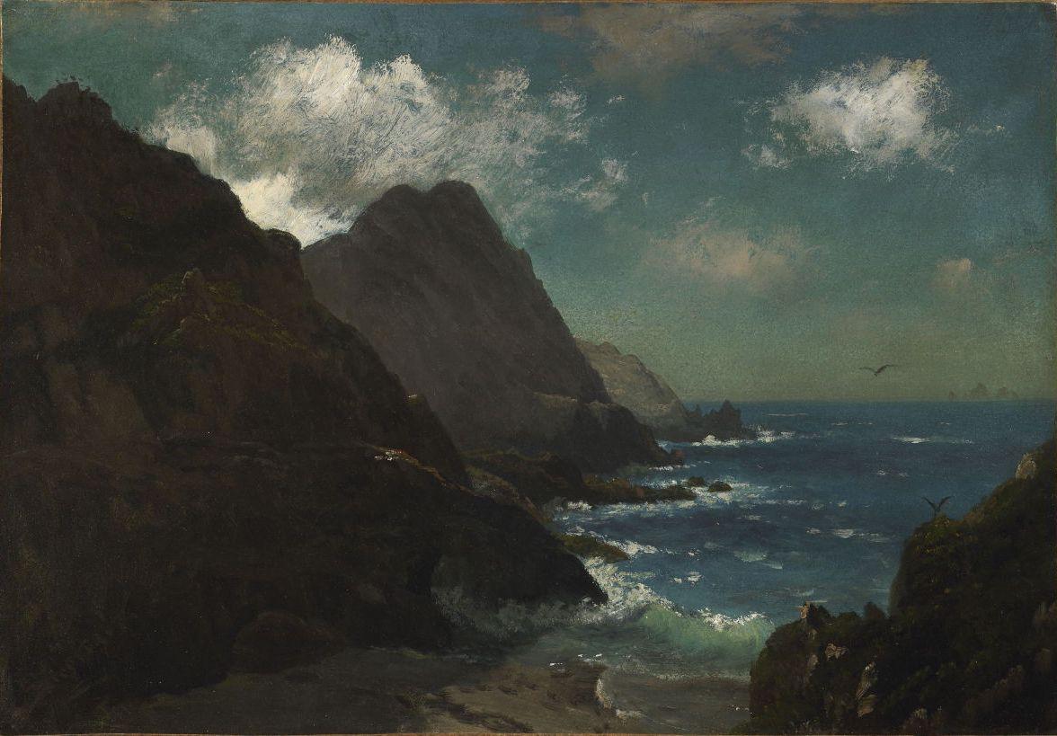 """catonhottinroof:  """"  Albert Bierstadt  Farallon Islands, ca. 1872  """""""