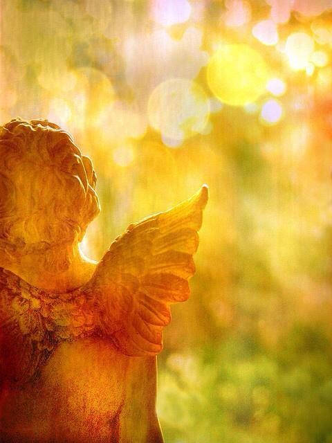 """""""Do not forget to show hospitality to strangers; for in doing so some have entertained angels without knowing.""""  www.womenforone.com #quotes #wf1"""