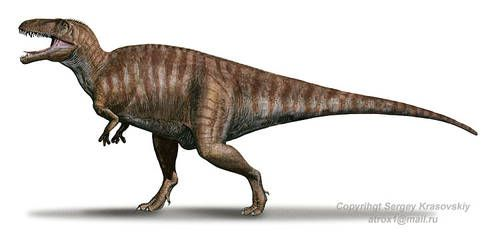 """Name:  Acrocanthosaurus (Greek for """"high-spined lizard""""); pronounced ACK-roe-CANTH-oh-SORE-us Habitat:  Woodlands of North America Historical Period:  Early Cretaceous (125 million years ago) Size and Weight:  About 40 feet long and 6 tons Diet:  Meat Distinguishing Characteristics:  Large size; narrow ridge on back"""