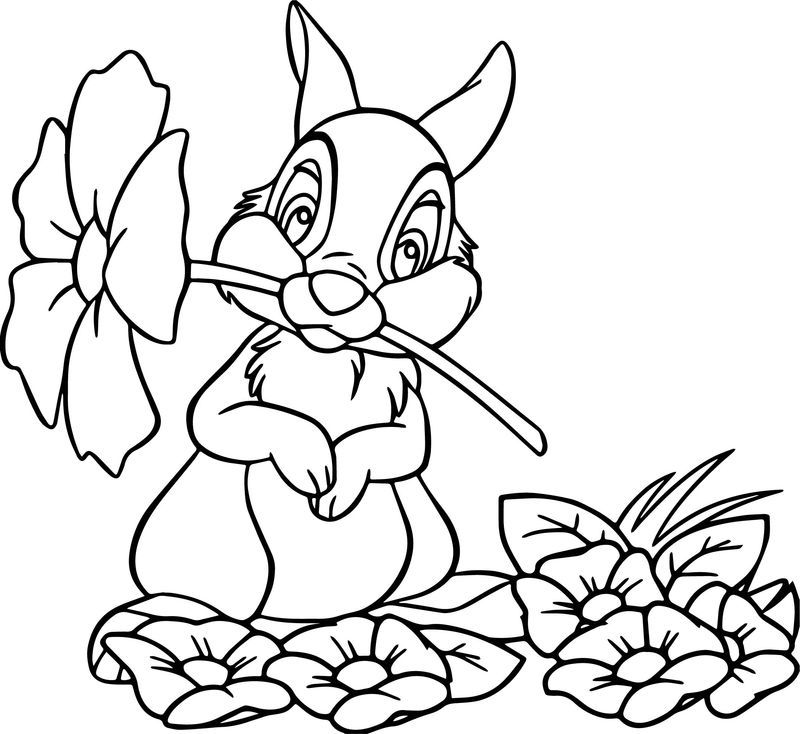Disney Bambi Thumber Bunny Cartoon Flower Coloring Page Cartoon Flowers Coloring Pages Flower Coloring Pages