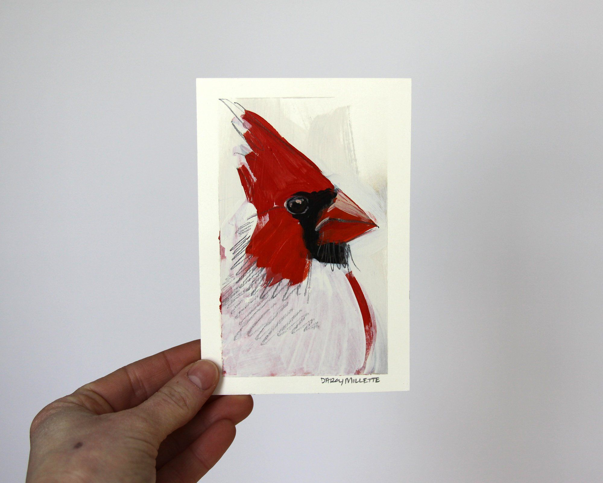 Cardinal Study 4, original painting by Darcy Millette in