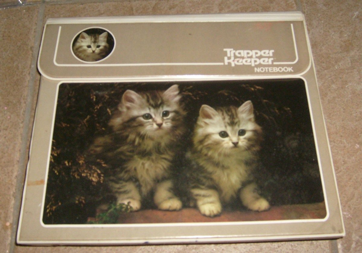 Pin By Molly Davis On Cats Grey Kitten Trapper Keeper Childhood Memories