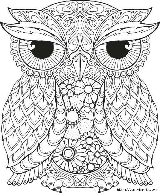 seth owl an intricate and super duper detailed illustration adult colouring page - Abstract Coloring Pages Adults